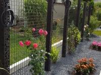 brise vue avec plantes grimpantes